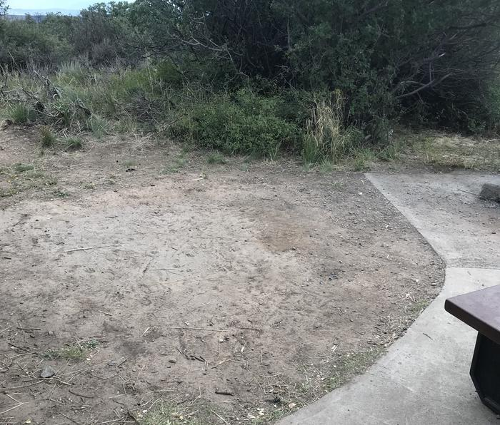 View of potential tent placement within Campsite A-021