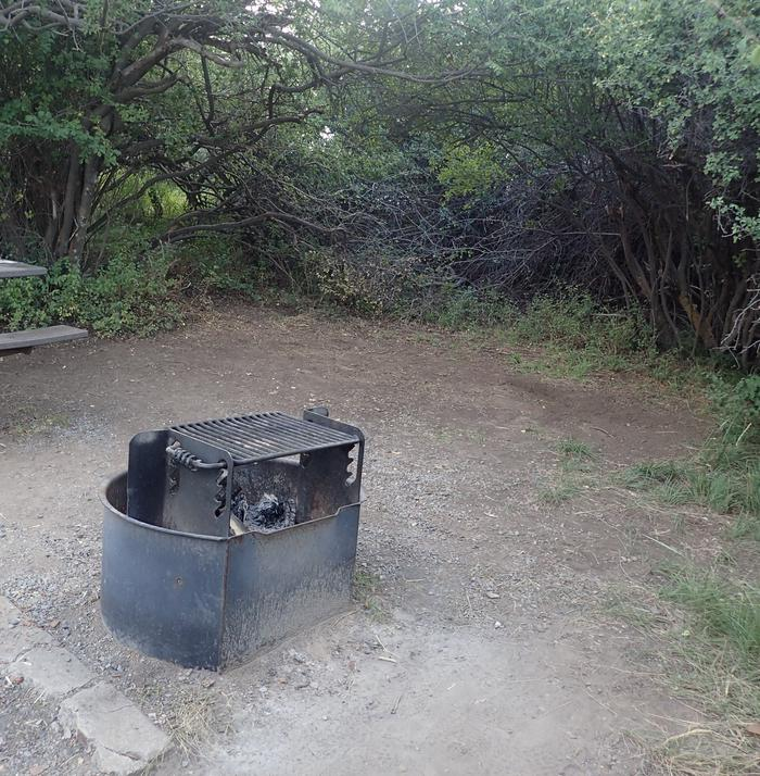 View of potential tent location within Campsite B-006
