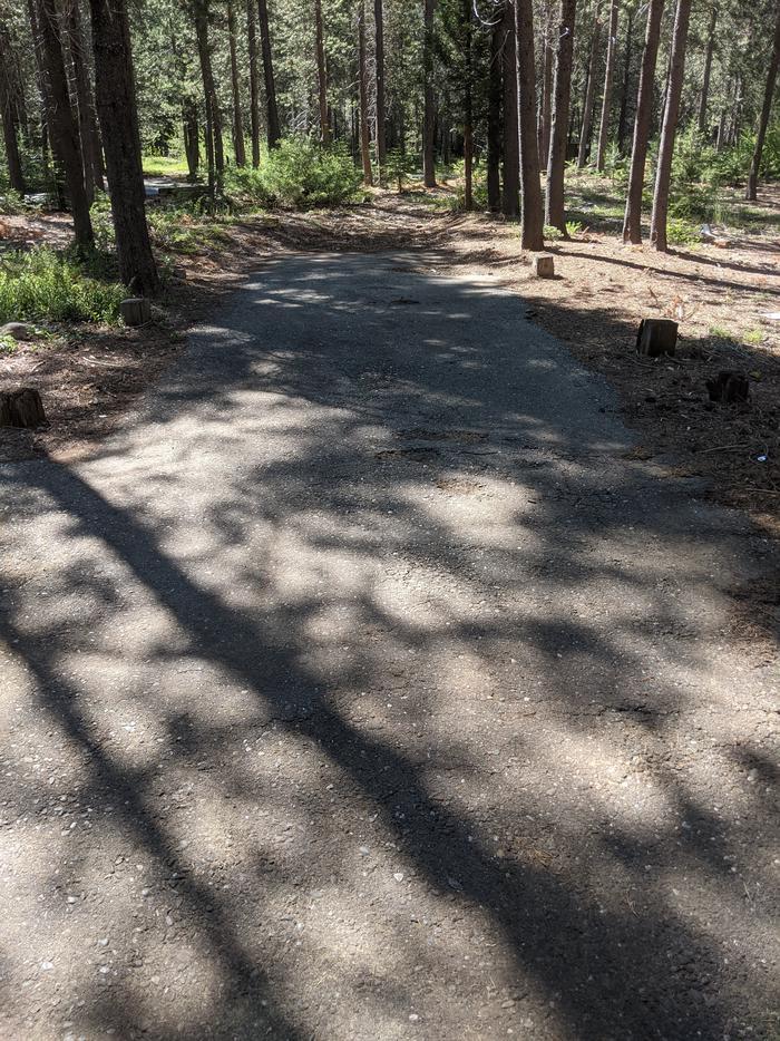 Little Beaver Site #19 Photo 1Site #19 parking spur