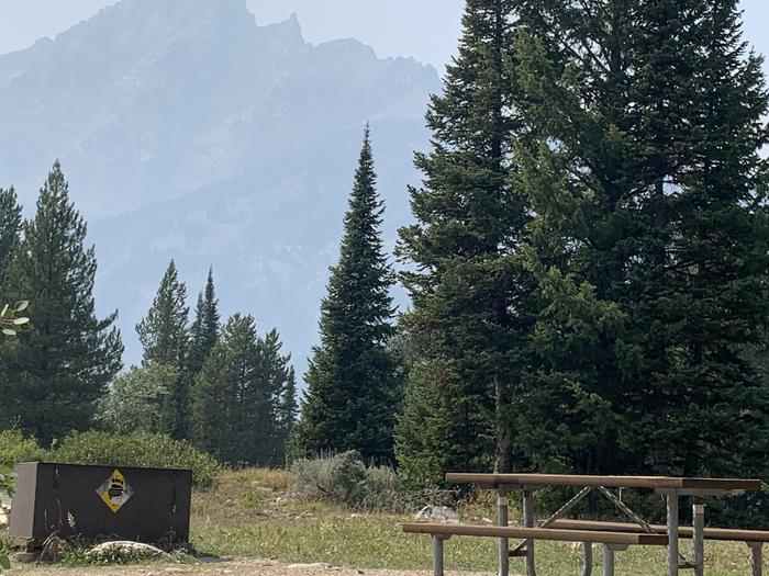 A photo of Site 45 of Loop Jenny Lake at Jenny Lake Campground with Picnic Table, Fire Pit, Food Storage, Tent Pad