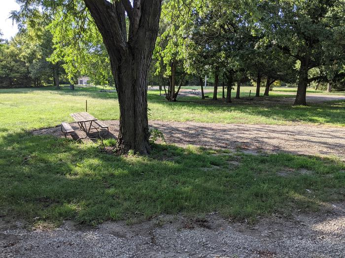 A photo of Site 5 of Loop A at Timber Creek Park with Picnic Table, Fire Pit, Shade