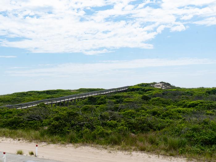 Boardwalk over a dune.View of the primary dune and boardwalk leading to the ocean beach.