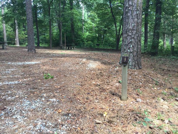 A photo of Site 01 of Loop Brickhouse at Brick House Campground (SC) with Picnic Table, Shade, Lantern Pole
