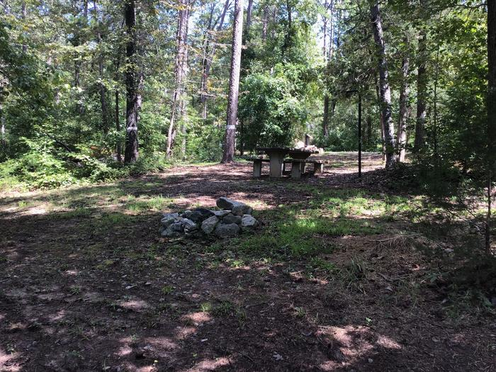 A photo of Site 07 of Loop Woods Ferry at Woods Ferry Campground (SC) with Picnic Table, Fire Pit, Lantern Pole