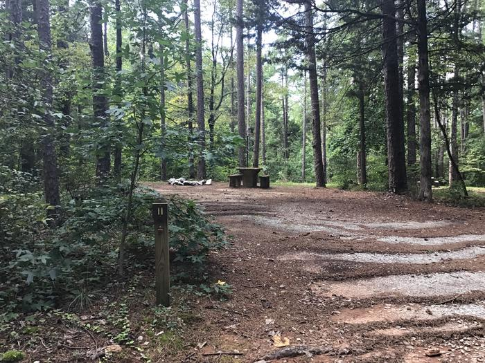 A photo of Site 11 of Loop Woods Ferry at Woods Ferry Campground (SC) with Picnic Table, Fire Pit, Lantern Pole