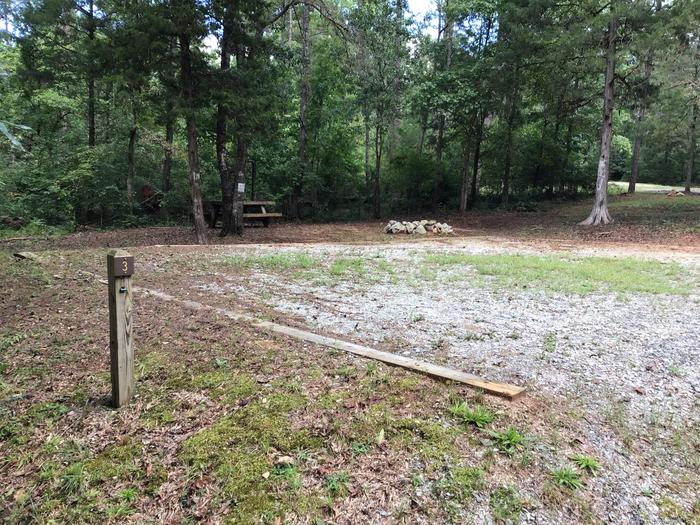 A photo of Site 03 of Loop Woods Ferry at Woods Ferry Campground (SC) with Picnic Table, Fire Pit, Lantern Pole