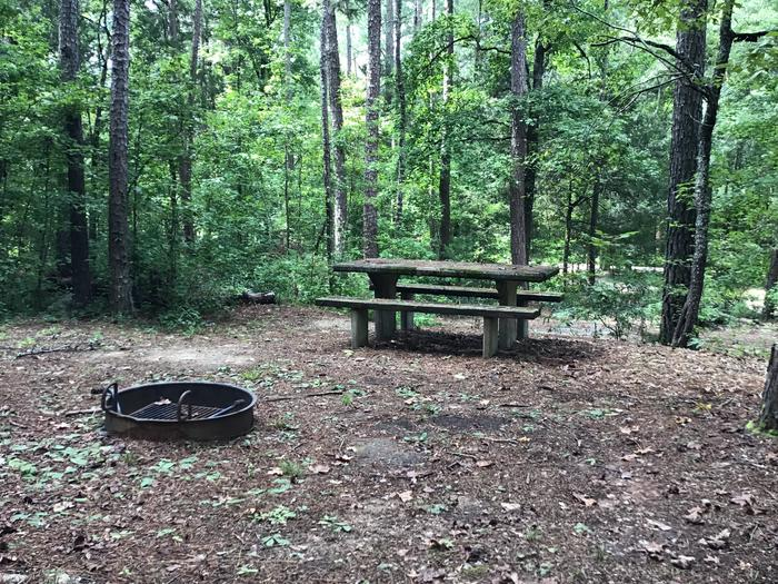 A photo of Site 01 of Loop Woods Ferry at Woods Ferry Campground (SC) with Picnic Table, Fire Pit