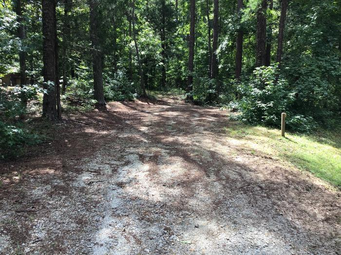 A photo of Site 01 of Loop Woods Ferry at Woods Ferry Campground (SC)