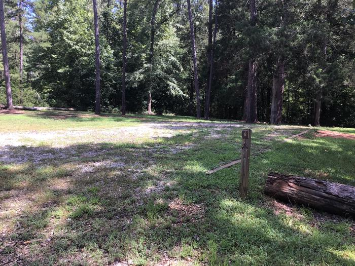 A photo of Site 08 of Loop Woods Ferry at Woods Ferry Campground (SC) with Picnic Table, Fire Pit, Lantern Pole