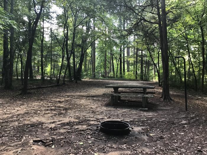 A photo of Site 12 of Loop Woods Ferry at Woods Ferry Campground (SC) with Picnic Table, Fire Pit, Lantern Pole