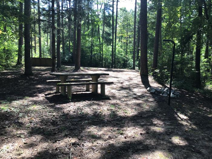 A photo of Site 14 of Loop Woods Ferry at Woods Ferry Campground (SC) with Picnic Table, Fire Pit, Lantern Pole
