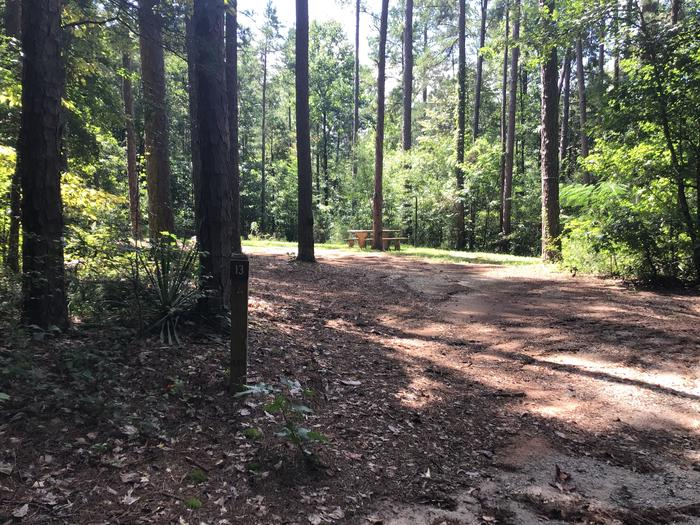 A photo of Site 13 of Loop Woods Ferry at Woods Ferry Campground (SC) with Picnic Table, Fire Pit, Lantern Pole