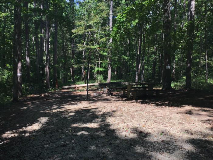 A photo of Site 15 of Loop Woods Ferry at Woods Ferry Campground (SC) with Picnic Table, Fire Pit, Lantern Pole
