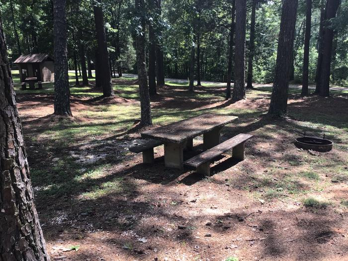 A photo of Site 07 of Loop Brickhouse at Brick House Campground (SC) with Picnic Table, Fire Pit, Shade, Lantern Pole