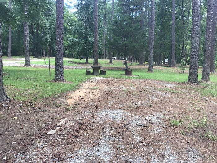 A photo of Site 12 of Loop Brickhouse at Brick House Campground (SC) with Picnic Table, Fire Pit, Shade, Lantern Pole