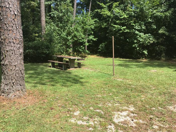 A photo of Site 10 of Loop Brickhouse at Brick House Campground (SC) with Picnic Table, Fire Pit, Shade, Lantern Pole