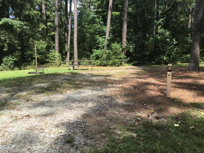 A photo of Site 11 of Loop Brickhouse at Brick House Campground (SC) with Picnic Table, Fire Pit, Shade, Lantern Pole