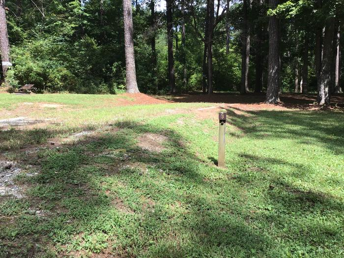 A photo of Site 03 of Loop Brickhouse at Brick House Campground (SC) with Picnic Table, Fire Pit, Shade, Lantern Pole