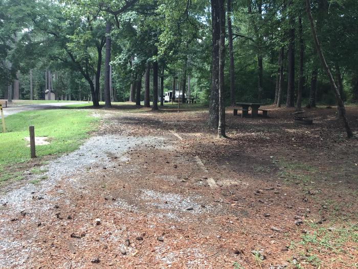 A photo of Site 04 of Loop Brickhouse at Brick House Campground (SC) with Picnic Table, Fire Pit, Shade, Lantern Pole