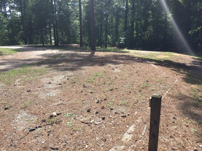 A photo of Site 14 of Loop Brickhouse at Brick House Campground (SC) with Picnic Table, Fire Pit, Shade, Lantern Pole