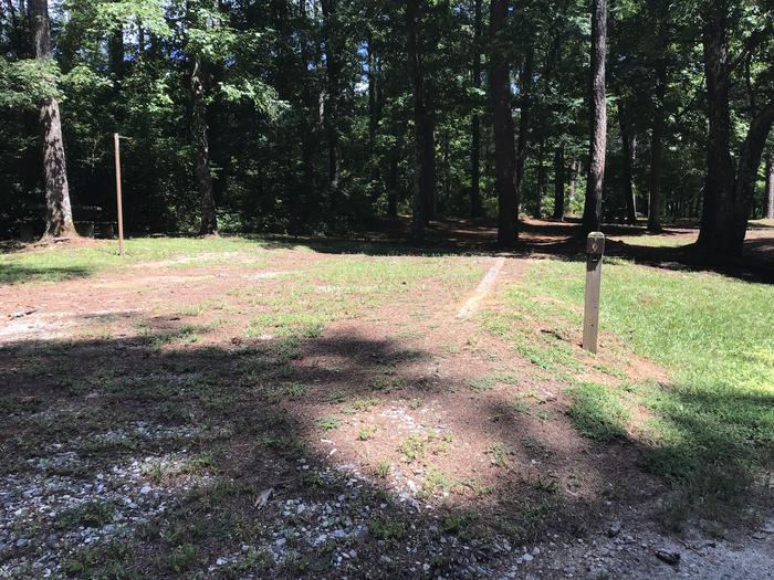 A photo of Site 06 of Loop Brickhouse at Brick House Campground (SC) with Picnic Table, Shade, Lantern Pole