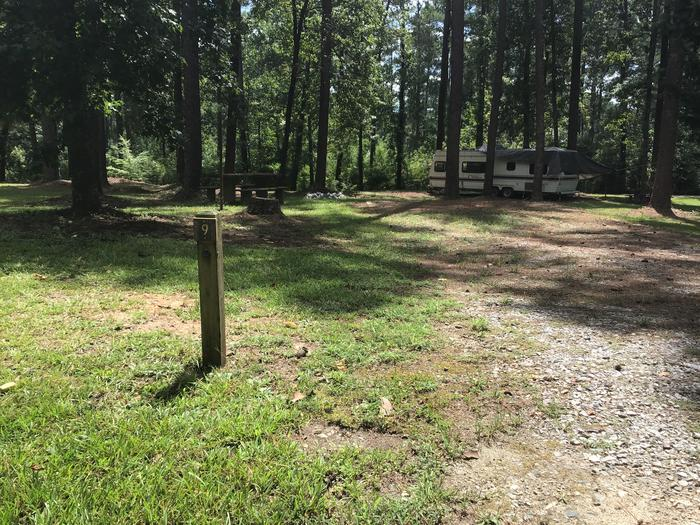 A photo of Site 09 of Loop Brickhouse at Brick House Campground (SC) with Picnic Table, Fire Pit, Shade, Lantern Pole