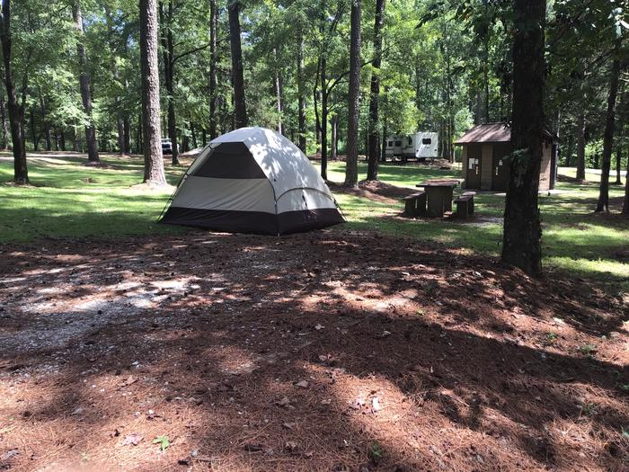 A photo of Site 05 of Loop Brickhouse at Brick House Campground (SC) with Picnic Table, Fire Pit, Shade, Lantern Pole