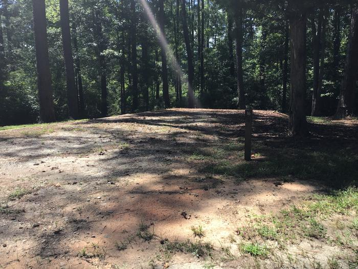 A photo of Site 16 of Loop Brickhouse at Brick House Campground (SC) with Picnic Table, Fire Pit, Shade, Lantern Pole