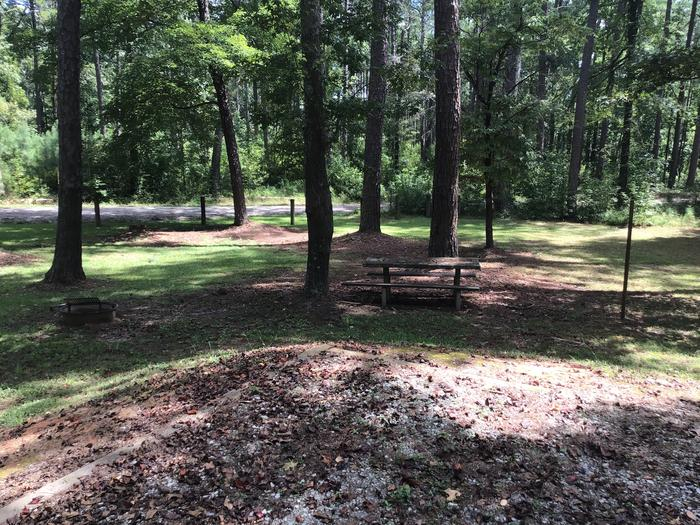 A photo of Site 21 of Loop Brickhouse at Brick House Campground (SC) with Picnic Table, Fire Pit, Shade, Lantern Pole