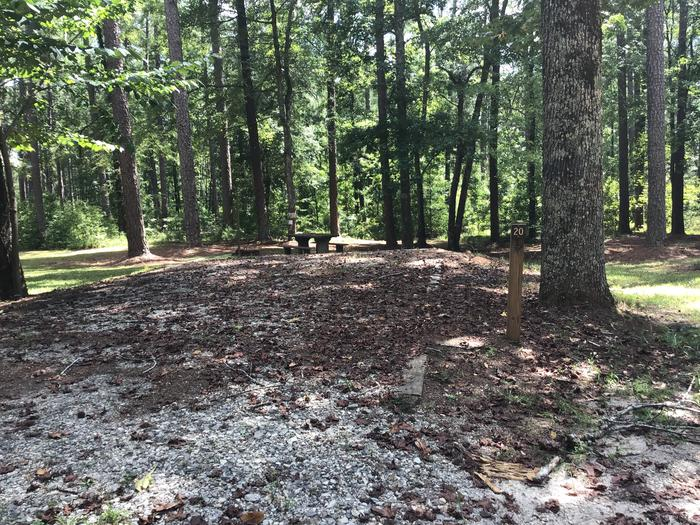 A photo of Site 20 of Loop Brickhouse at Brick House Campground (SC) with Picnic Table, Fire Pit, Shade, Lantern Pole
