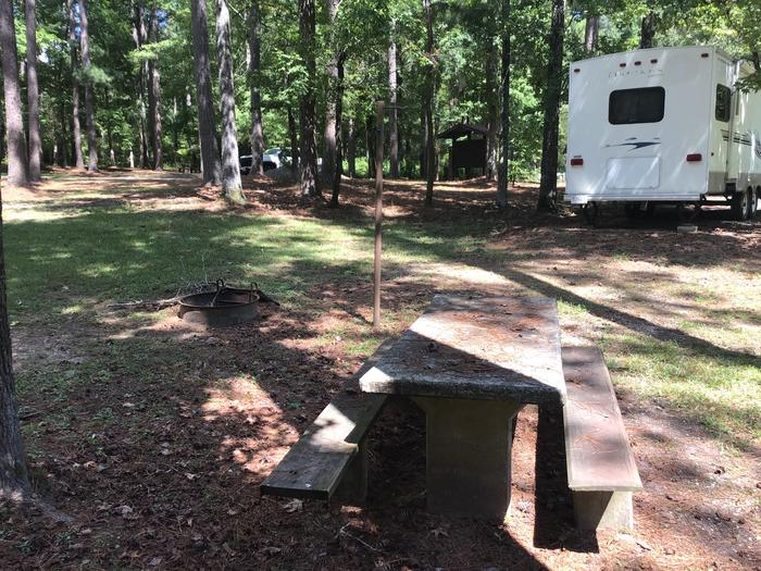 A photo of Site 19 of Loop Brickhouse at Brick House Campground (SC) with Picnic Table, Fire Pit, Shade, Lantern Pole