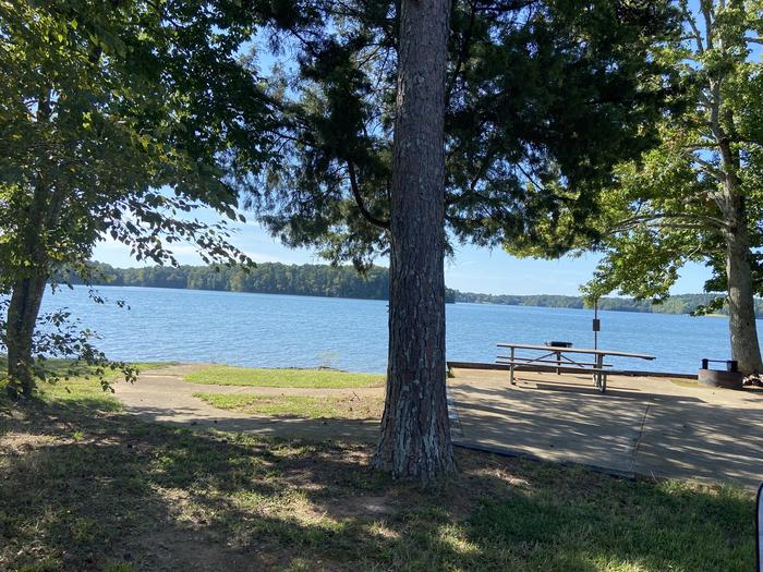 A photo of Site 42 of Loop SPRINGFIELD  at SPRINGFIELD with Picnic Table, Electricity Hookup, Fire Pit, Shade, Tent Pad, Waterfront, Lantern Pole, Water Hookup