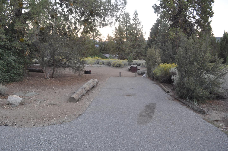 Site 13 SerranoSite 13.
