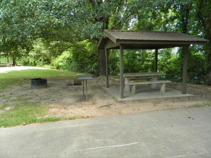 Wilbur D. Mills 18 Picnic Shelter + Fire Pit