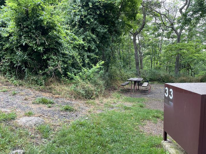 A photo of Site 033 of Loop Lower Loop at Loft Mountain Campground with Picnic Table, Food Storage