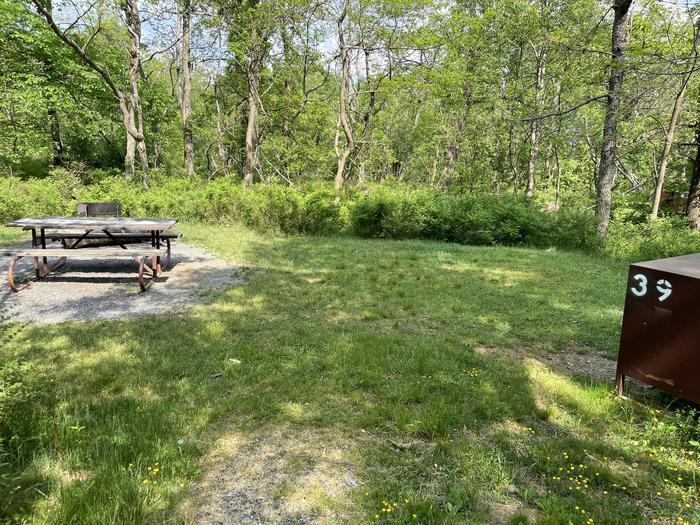 A photo of Site 039 of Loop Lower Loop at Loft Mountain Campground with Picnic Table, Fire Pit, Food Storage