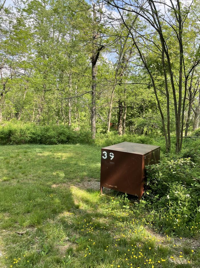 A photo of Site 039 of Loop Lower Loop at Loft Mountain Campground with Food Storage
