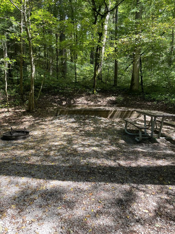 A photo of Site A15 of Loop A at ABRAM'S CREEK CAMPGROUND with Picnic Table, Fire Pit