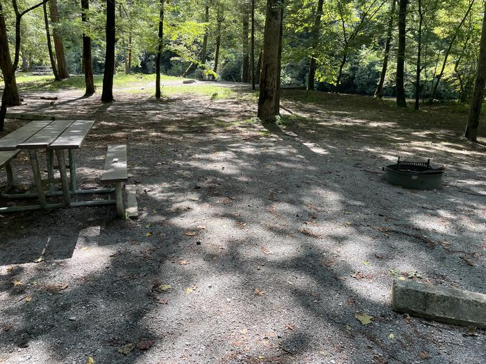 A photo of Site A01 of Loop A at ABRAM'S CREEK CAMPGROUND with Picnic Table, Fire Pit, Shade
