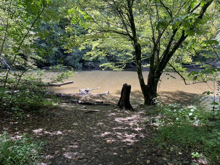 A photo of Site A01 of Loop A at ABRAM'S CREEK CAMPGROUND with Shade, Waterfront