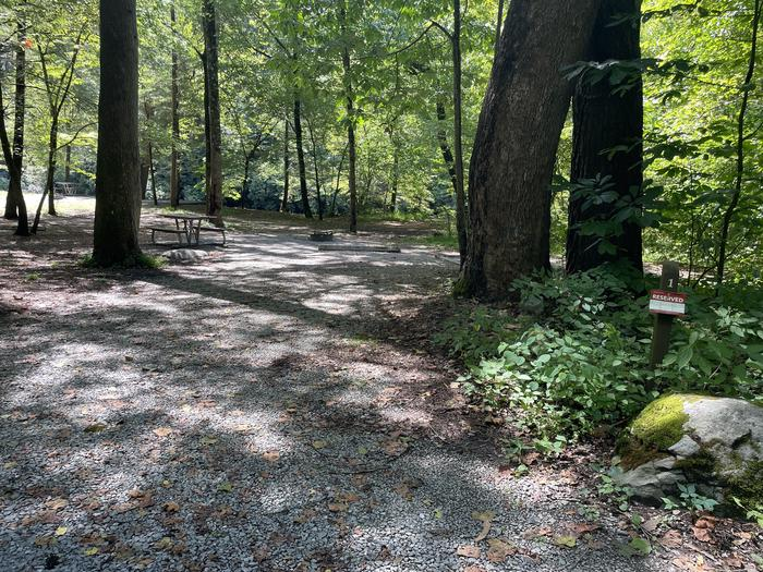 A photo of Site A01 of Loop A at ABRAM'S CREEK CAMPGROUND with Picnic Table, Fire Pit, Shade, Tent Pad, Waterfront