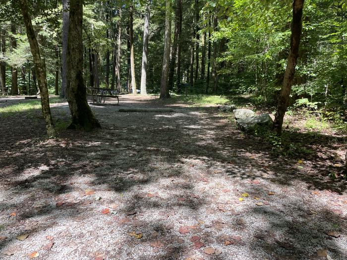 A photo of Site A10 of Loop A at ABRAM'S CREEK CAMPGROUND with Picnic Table, Fire Pit, Shade, Tent Pad