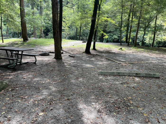 A photo of Site A02 of Loop A at ABRAM'S CREEK CAMPGROUND with Picnic Table, Fire Pit, Shade, Tent Pad