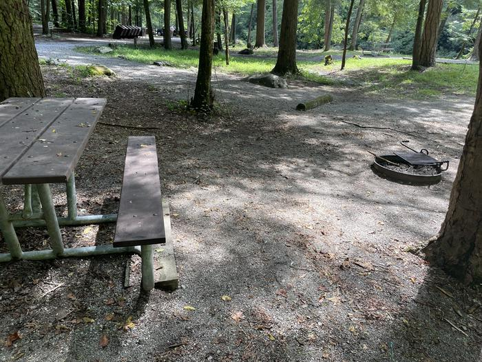 A photo of Site A02 of Loop A at ABRAM'S CREEK CAMPGROUND with Picnic Table, Fire Pit, Shade