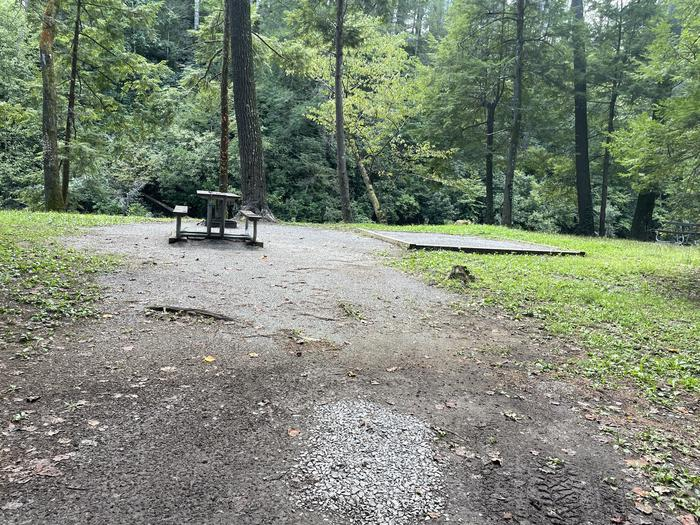 A photo of Site A04 of Loop A at ABRAM'S CREEK CAMPGROUND with Picnic Table, Fire Pit, Tent Pad, Waterfront