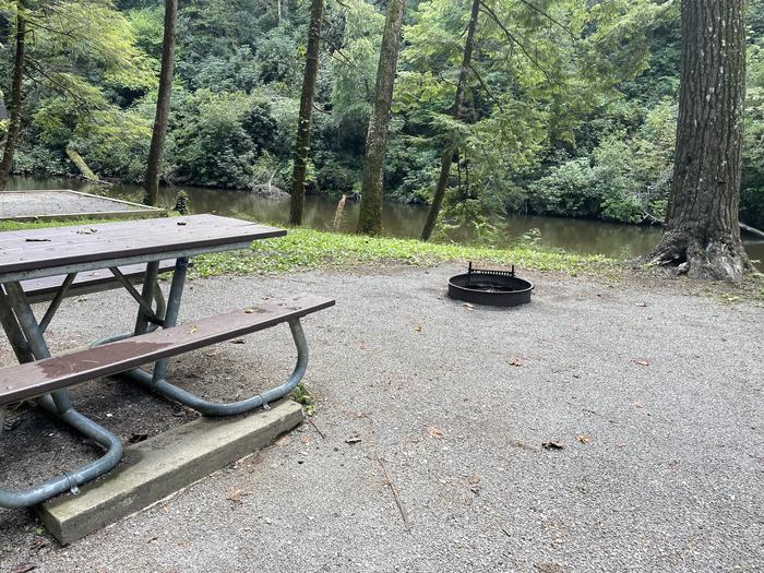A photo of Site A04 of Loop A at ABRAM'S CREEK CAMPGROUND with Picnic Table, Fire Pit, Waterfront