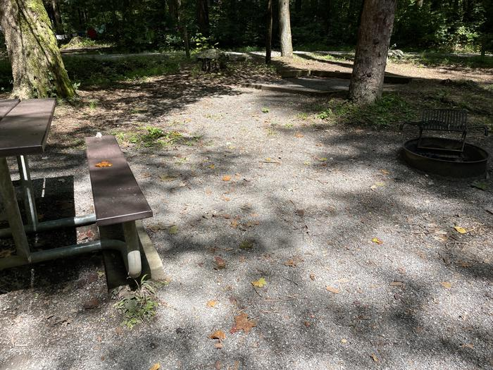 A photo of Site A11 of Loop A at ABRAM'S CREEK CAMPGROUND with Picnic Table, Fire Pit, Shade