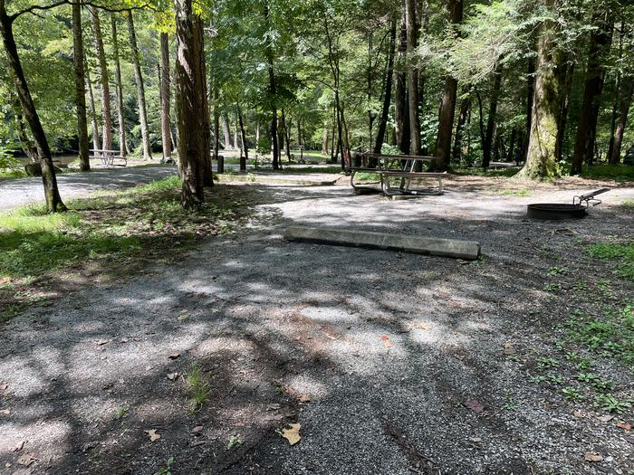 A photo of Site A11 of Loop A at ABRAM'S CREEK CAMPGROUND with Picnic Table, Fire Pit, Tent Pad