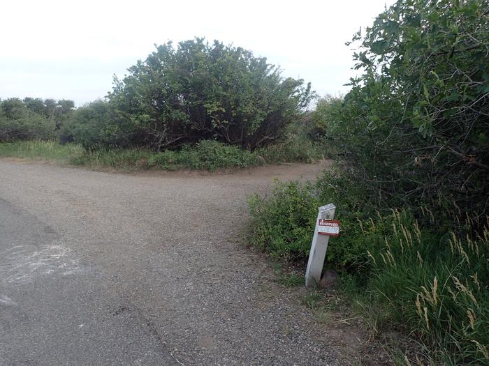 Drive-up view of Campsite B-015