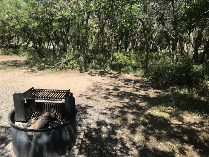 View of potential tent space within Campsite A-009